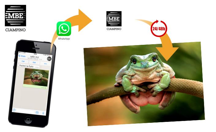 stampa foto da whatsapp Mail Boxes Etc. Ciampino - Roma